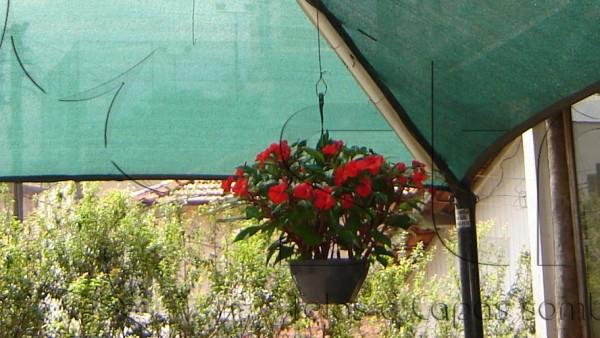 tela sombreamento floricultura